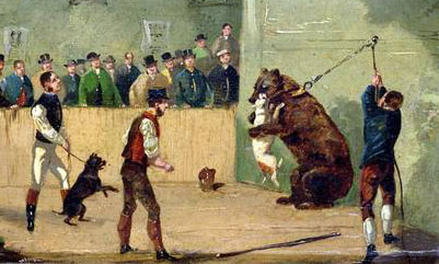Animals in captivity essay